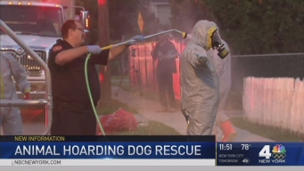 Haz-Mat Called to NY Home Where Dogs Found in Filth