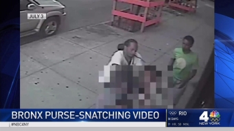 Man Sought in String of Purse-Snatchings in Bronx
