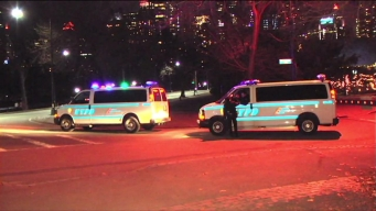 Police Search for 4 Men Who Violently Robbed Man in Central Park