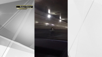 Bicyclist Brings Lincoln Tunnel Traffic to a Halt
