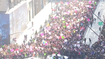 Thousands Flood Fifth Avenue for Women's March NYC