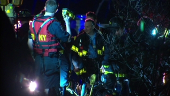 Good Samaritans Rescue Kids From Icy Pond in Central Park