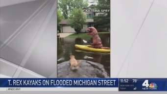 T. Rex Kayaks on Flooded Michigan Street