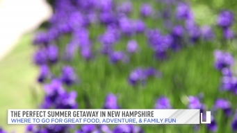 Planning A Perfect Summer Getaway to New Hampshire