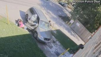 Woman, Baby Thrown Out of Car in Carjacking Caught on Camera