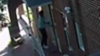 Woman Hides Inside Queens Home During Break In