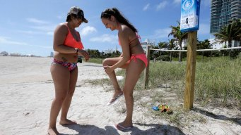 Researchers: Common Sunscreen Ingredient Toxic to Coral