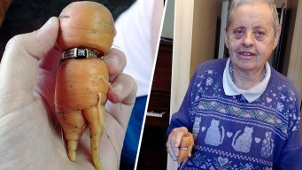Long-Lost Diamond Ring Turns Up on a Carrot