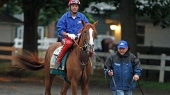 California Chrome's Jockey Speaks Ahead of Belmont