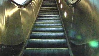 Crews Free Child Stuck in Escalator at Stamford Macy's