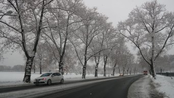 21K+ Still Without Power in Sussex After 1st Winter Storm
