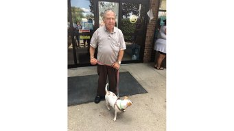 Happy Tails: Man Makes Heartfelt Connection with Little Dog