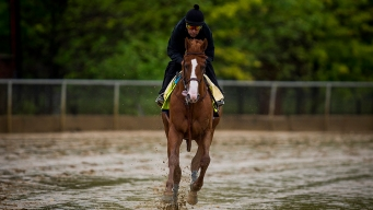 Triple Crown: Belmont Distance, Fatigue to Test Justify