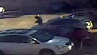 Police Release Video of Oheka Castle Shooting