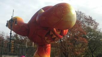 Macy's Thanksgiving Parade Balloons Take Flight, Delight