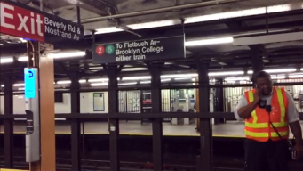 20 People Overcome by Pepper Spray on Subway: NYPD
