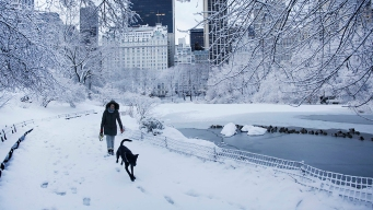First Snowflakes Fall in NYC; 3-6 Inches Expected Regionally