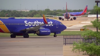 Southwest Limits Emotional Support Animals to Cats and Dogs