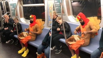 Prankster in Turkey Costume Carves, Gobbles Bird on Subway