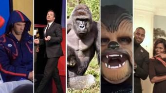 Top 5 Memes of 2016