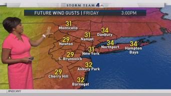 Forecast for Friday, Nov. 17