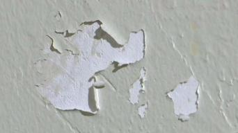 4 of 5 Lead-Inspected NYCHA Apartments Have Chipped Paint