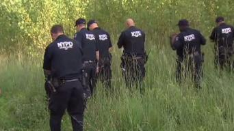 Cops Comb Park Searching for Man Who Sexually Attacked Teen