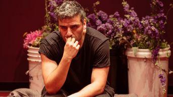 The Public's 'Hamlet' Has an A-List Star ... and Lasagna