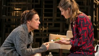 "Review: Laurie Metcalf in ""The Other Place"""