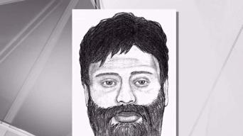 Bearded Man in Eerie Sketch Sought in NY Attack on 2 Girls