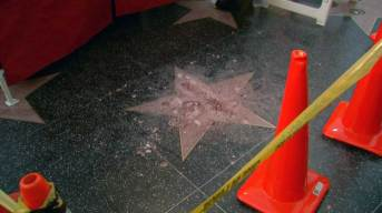 Vandal Smashes Trump's Walk of Fame Star to Pieces