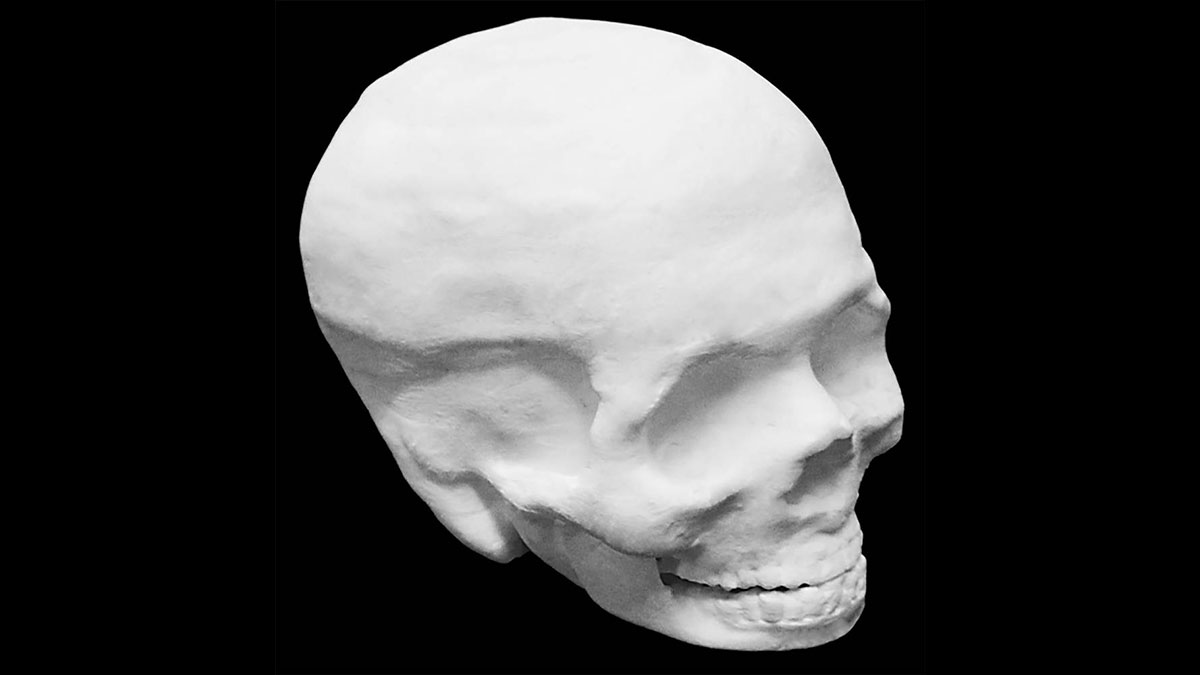 The hyperelastic bone material used to make this human skull could help people heal from skull, spine or other bone injuries.
