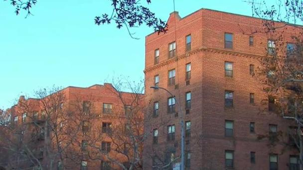 Attorney Wants Independent Experts at NYCHA Lead Inspections
