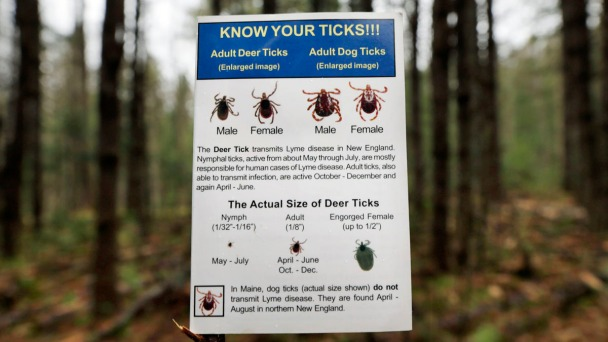 'The Lyme Wars': Investigating a Public Health Crisis