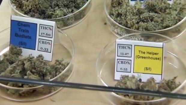 [NY] NY Lawmakers Reach Agreement on Medical Marijuana