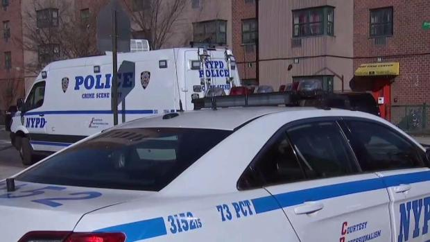 [NY] Baby Girl, Teenage Boy Among 4 Family Members Found Dead in Brooklyn Home