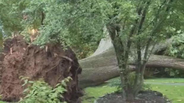 Crazy Video Shows Wild Winds Causing Mayhem in NJ