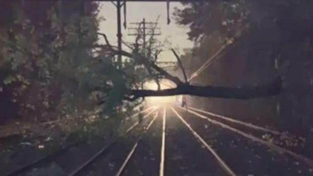 [NY] Downed Trees Cause Nightmare Commutes in Connecticut
