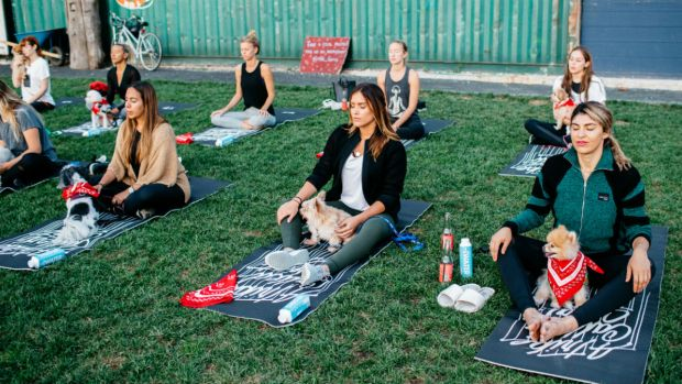 In Pictures: This NYC Yoga Party Put the 'Dog' in 'Downward Dog'