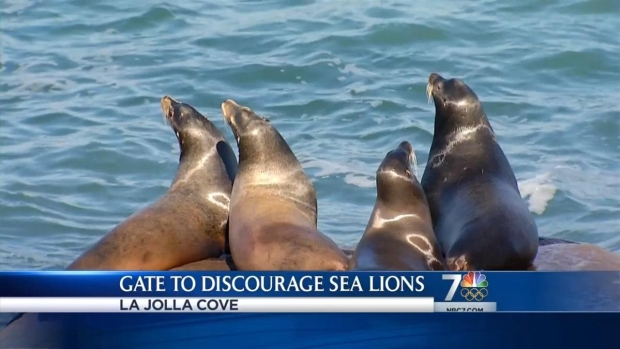 [DGO] City Installs New Gate at La Jolla Cove