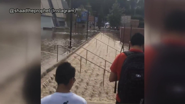 [LA] Compilation: Flooding on UCLA Campus