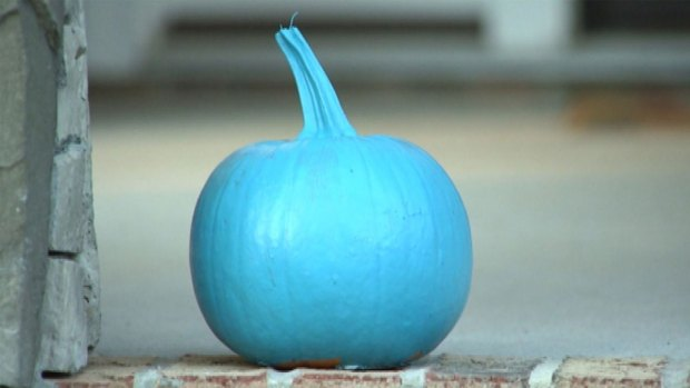[NATL-CHI] Teal Pumpkins Mean Safer Treats