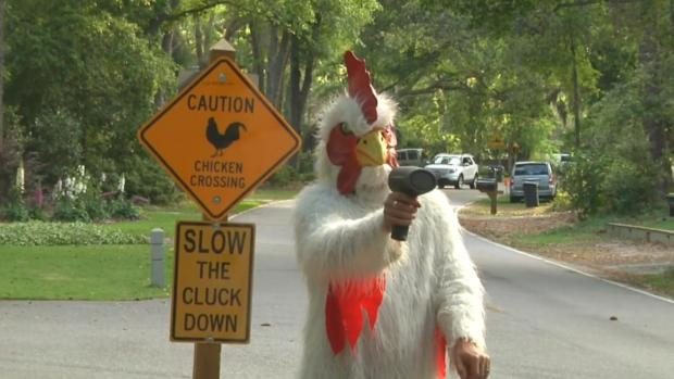 [NATL] 'Slow the Cluck Down!': Chicken Man Fights Speeders