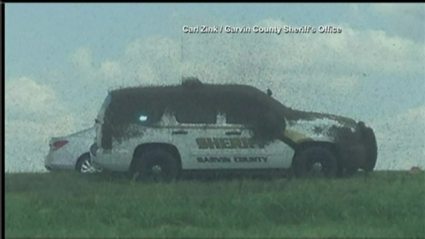[NATL-DFW] Bee Truck Overturns, Dumping Millions of Bees Onto I-35