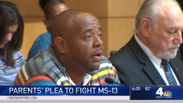 [NY] Parents of Alleged Gang Victims Speak at House Hearing