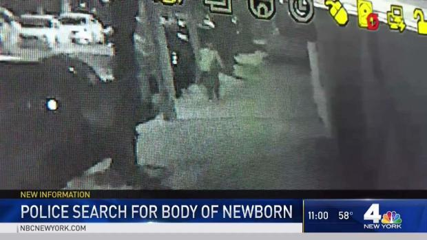[NY] Police Search for Newborn Allegedly Dumped at Tree