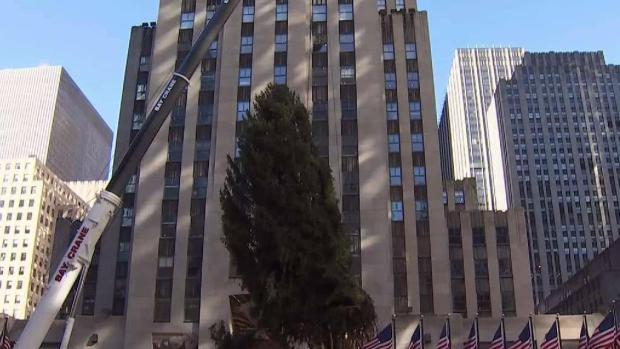[NY] Rockefeller Center Tree Rises Over Plaza