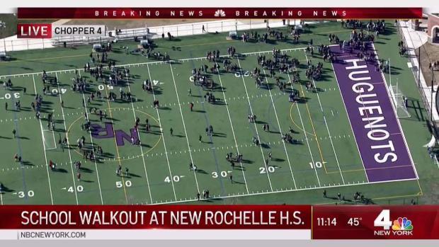 [NY] School Walkout at New Rochelle High School