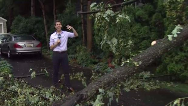 Strong Storms Topple Trees in Tri-State