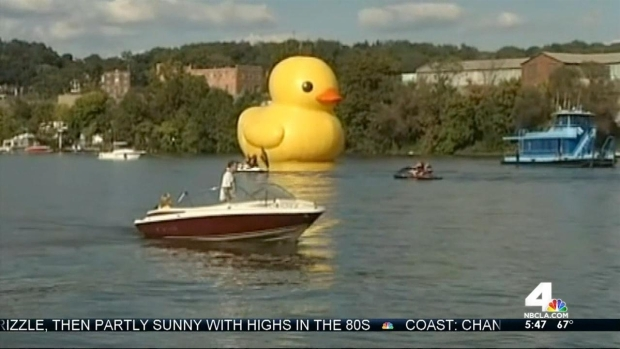 [LA] World's Largest Rubber Duck Floats into Los Angeles